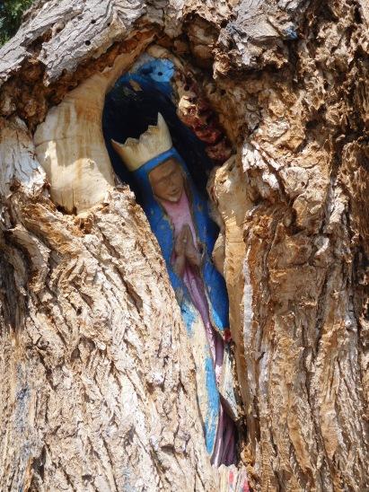 TreeMary