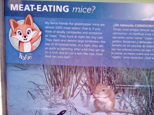 Meat Eating Mice Who Roar