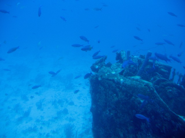 ArubaShipwreckBow2011