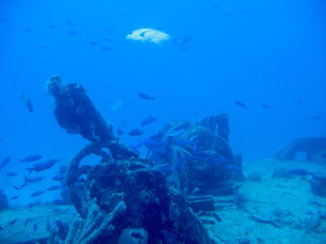 ArubaShipwreckParts